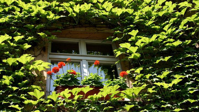 Blog Ciudad Sostenible Infraestructura ecologica urbana 02