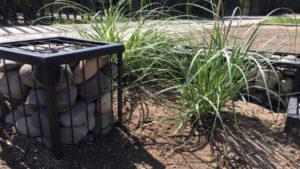Jardin Zenteno Sostenible