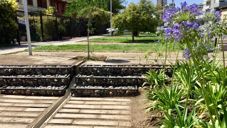 Jardín Zenteno: ¡porque las aguas lluvia no son un desecho!